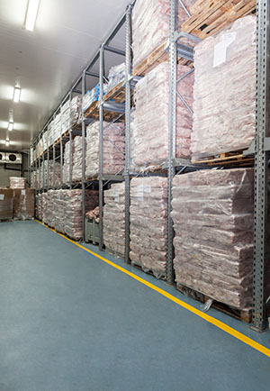 Cold Storage Food Warehouse